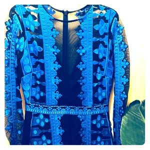 """Nicole Miller embroidered """"Illusion Dress"""""""